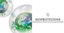 Bioprotezione: strumento per vinificare con minor quantità di solfiti