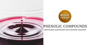 Quantification and determination of phenolic compounds by non-invasive methods and multimodal interactions in red wines