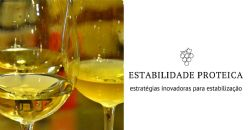 Obtenção da estabilidade proteica por hidrólise das proteínas instáveis do vinho