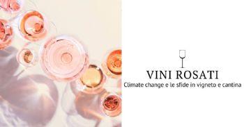 Rosati e climate change: le sfide in vigneto e in cantina per preservare aromi e tipicità