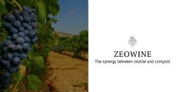 ZEOWINE: the synergy between zeolite and compost. Effects on vine physiology and grape quality