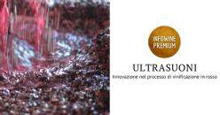 Innovazioni nel processo di vinificazione dei vini rossi tramite la tecnologia a ultrasuoni