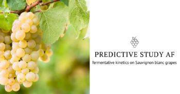 Predictive study over fermentative kinetics on Sauvignon blanc grapes