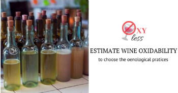 Estimating the oxidability of wines quickly with analytical methods and voltammetry
