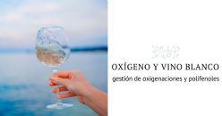 Las oxigenaciones involuntarias – y el papel de los polifenoles  - durante la elaboración de los vinos blancos