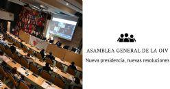 OIV: Nueva presidencia, nuevas resoluciones, nuevo idioma oficial y nueva sede en el horizonte