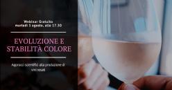 Webinar Formativo Gratuito - Approcci scientifici alla produzione di vini rosati: L'evoluzione e la stabilità del colore nel tempo
