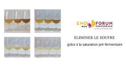 Saturation pré-fermentaire en CO2 des moûts de raisin pour obtenir des vins blancs à faible teneur en SO2
