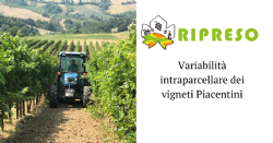 RIPRESO: an opportunity to investigate the origin and degree of intra-parcel variability in the vineyards of Piacenza