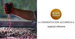 La gestión de la fermentación alcohólica