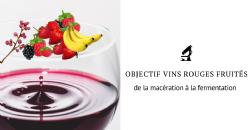 Objectif Vins Rouges Fruités