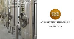 Fermentazioni e soluzioni enologiche  per aumentare o abbassare l'acidità, controllare le minacce microbiche e ottenere profili unici