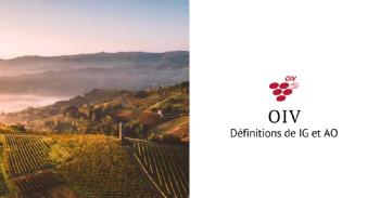 L'OIV révise ses définitions des IG et des AO