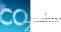 Prefermentative CO2 saturation of grape must to obtain white wines with low SO2 content