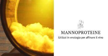Mannoproteine: utilizzi in enologia per affinare il vino