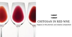 How chitosan impacts the phenolic and volatile composition of a red wine