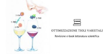 Ottimizzazione dei tioli varietali - ebook pubblicato