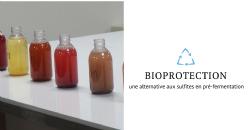 Revue de presse: bioprotection et gestion de la fermentation alcoolique