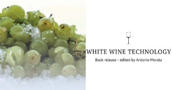 White Wine Technology - book release