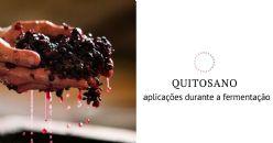 Quitosano e fermentação