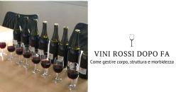 Corpo, struttura e morbidezza dei vini rossi