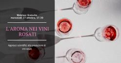 Webinar Formativo Gratuito - Approcci scientifici alla produzione di vini rosati: La componente aromatica
