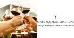 Study of cross-modal interactions through sensory and chemical characteristics of Italian red wines