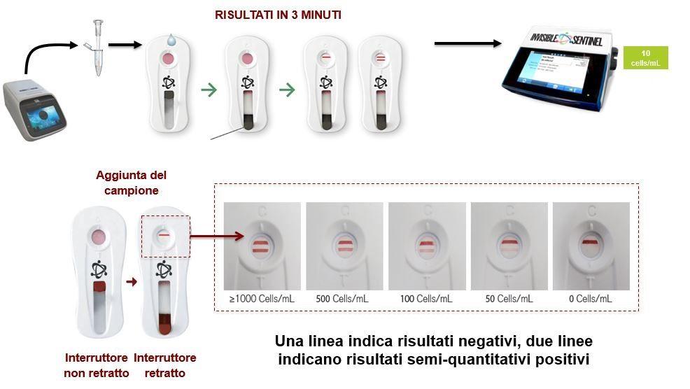 Interpretazione risultati Veriflow Biomerieux