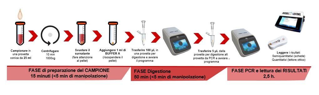 Protocollo Veriflow di Biomerieux