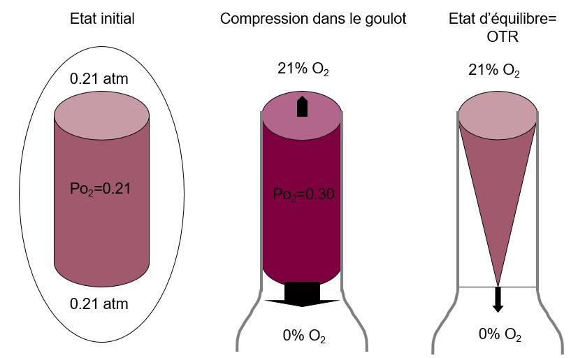 Schéma expliquant les phénomènes de désorption et de taux de transfert d'oxygène d'un bouchon cylindrique avec une concentration en oxygène proche de 21 % dans son état initial.