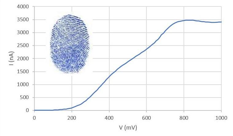 Figura 1: Esempio di curva intensità vs potenziale ottenuta su un campione di vino