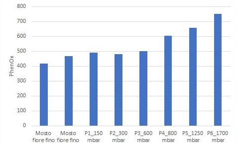 Figura 3: Evoluzione dell'indice PhenOx durante la pressatura di Sauvignon Blanc che mostra una frazione di mosto povero di polifenoli con indice PhenOx stabile (mosto fiore fino a 600 mbar) e una frazione di mosto ricca di polifenoli con indice PhenOx crescente (da 800 mbar al termine della pressatura).