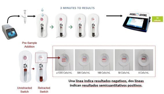Interpretacion resultados Veriflow Biomerieux