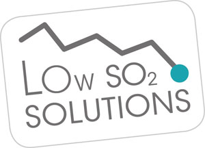 LowSolutions Logo