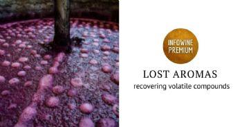 lost aromas