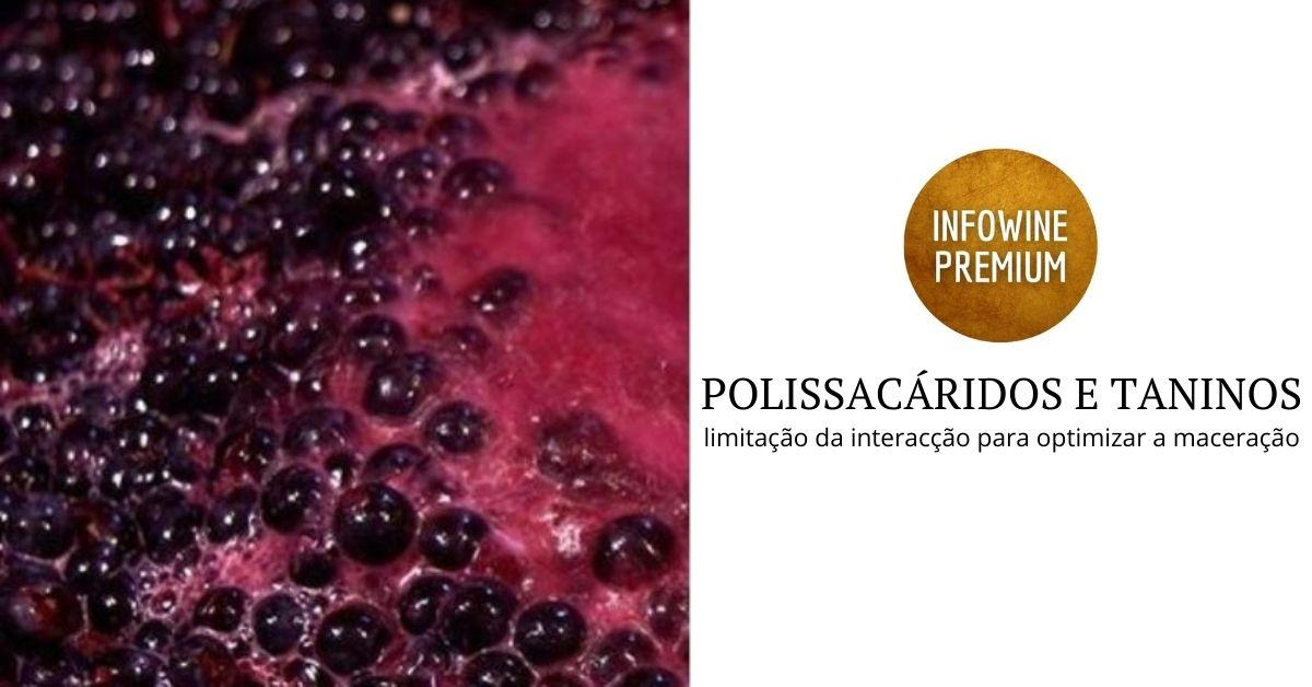 POLISSACARIDOS E TANINOS