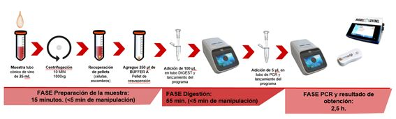 protocolo Veriflow Biomerieux